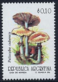 Timbre: Psilocybe cubensis