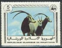 Timbre: Oryx