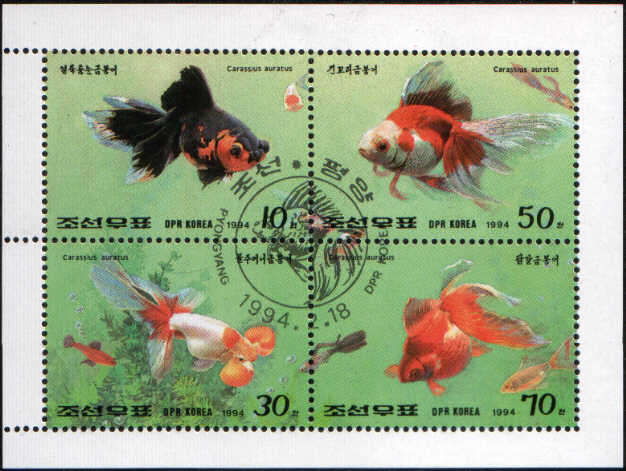 Timbre: BF poissons rouges
