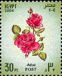 Timbre: Rosa sp. - flore