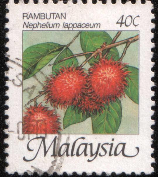 Timbre: Fruits Nephelium lappaceum