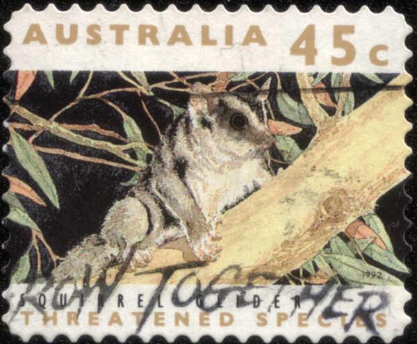 Timbre: Espèces en voie d'extinction, écureuil volant, adhésif