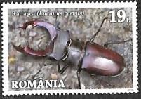 Timbre: Lucanus cervus