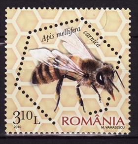 Timbre: Slovenian honey bee (Apis mellifera carnica)