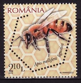 Timbre: Italian honey bee (Apis mellifera ligustica)
