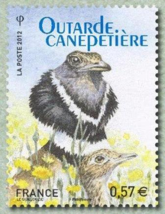 Timbre: Outarde canepetière