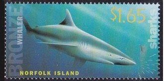 Timbre: Grand requin blanc