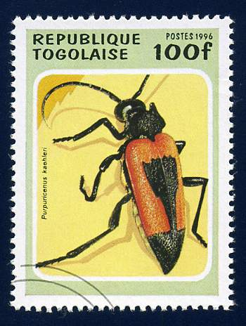 Timbre: Insecte