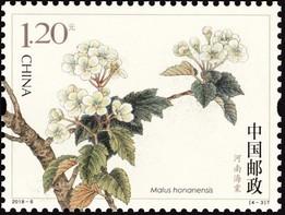 Timbre: Honan Crabapple (Malus honanensis)