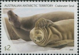 Timbre: Crabeater Seal